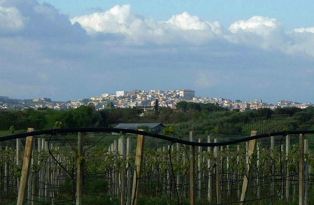 Vue sur la ville de Velletri, photographie Wikimedia Commons.